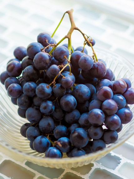 Muscat de Hambourg grapes