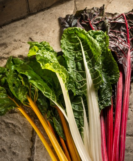 Yorkshire red, yellow and swiss chard