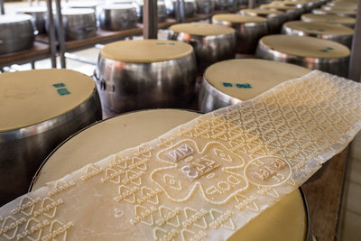 Zanetti Cheese Production for Wellocks