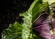 Cabbage - Hero Image